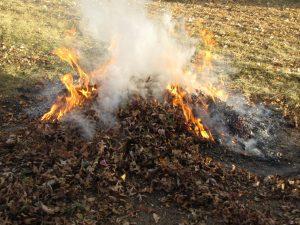 Arderea resturilor vegetale este interzisă